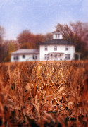 Cornfield Framed Prints - House and Autumn Cornfield Framed Print by Jill Battaglia