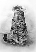 Scott Parker Metal Prints - House Cat Metal Print by Scott Parker