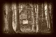 Angelika  Kimmig - House in the Woods Retro