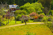 Saltspring Photo Originals - House of Colour by Graham Foulkes