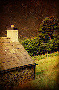 Lush Vegetation Posters - House on the Hills. Wicklow. Ireland Poster by Jenny Rainbow