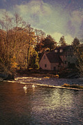 Swans... Photo Metal Prints - House On The River Metal Print by Christopher and Amanda Elwell