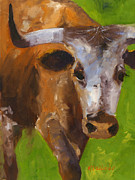 Longhorn Artist Framed Prints - How Is That Sports Fans? Framed Print by Kathleen McElwaine