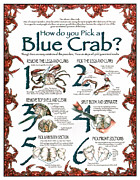 Jonathan Brown - How to Pick a Blue Crab