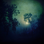 Moonlight Prints - Howl Print by Katya Horner