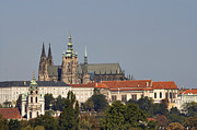 Prague Castle Framed Prints - Hradcany - Cathedral of St Vitus on the Prague castle Framed Print by Michal Boubin
