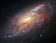 M106 Posters - Hubble view of M 106 Poster by Adam Romanowicz