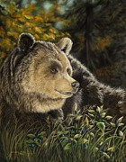 Grizzly Pastels - Hucklebeary by Stephanie Funke- Sweeten