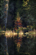 Paul DeRocker - Huff Lake Reflection