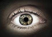 Human Eye Macro Print by Elena Elisseeva