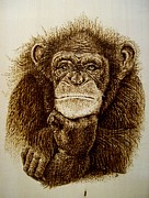Monkey Pyrography Framed Prints - Human Thought Framed Print by Cara Jordan