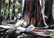 Sarah Lynch - Humboldt Redwoods