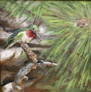 Birds Reliefs Prints - Hummer on a Limb Print by Lorrie T Dunks