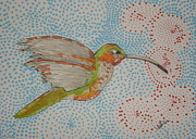 Hummingbird Drawings Metal Prints - Humming Around Metal Print by Marcia Weller-Wenbert