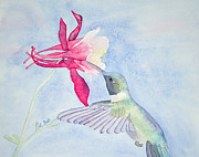 Laurel Best - Hummingbird and Columbine