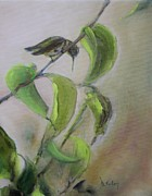 Mango Painting Originals - Hummingbird at Rest by Donna Tuten
