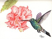 Chris Bajon Jones - Hummingbird Dining