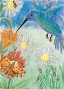 Jeanette K - Hummingbird Garden
