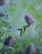 Mango Painting Originals - Hummingbird in Flight by Donna Tuten
