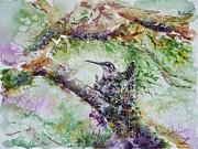 Hummingbird In The Nest Print by Zaira Dzhaubaeva