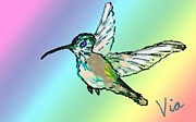 Hummingbird Paintings - Hummingbird  by Judy Via-Wolff