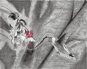 Susan Schmitz - Hummingbird