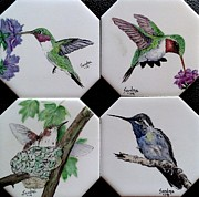 Sandra Maddox - Hummingbirds on Coasters