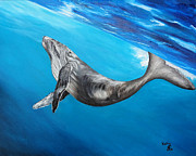 Humpback Whale Painting Framed Prints - Humpback Whale Framed Print by Kally Wininger