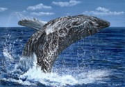 Humpback Whale Painting Framed Prints - Humpback Whale Framed Print by Tom Blodgett Jr