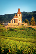 Haut-rhin Photo Prints - Hunawihr Dawn Print by Brian Jannsen