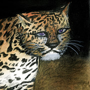 Leopard Pastels Posters - Hungry Eyes Poster by Renee Barnes