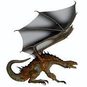 Corey Ford - Hunter Dragon Profile