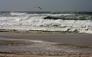 Panama City Beach Fl Prints - Hurricane Isaac Print by Debra Forand