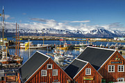 For Ninety One Days - Husavik Photo Color