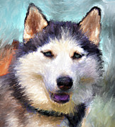 Huskies Digital Art Posters - Huskies Poster by Yury Malkov