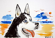 Husky Drawings Prints - Husky at the beach Print by Roberto Gagliardi
