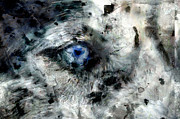 Husky Prints - Husky blue Eyes Print by Georgi Dimitrov