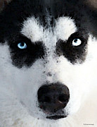 Winter Sports Art Prints Prints - Husky Dog Art - Bat Man Print by Sharon Cummings