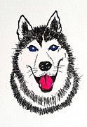 Husky Drawings Prints - Husky Dog Print by Esther Rowden