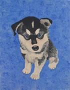 Husky Puppy Framed Prints - Husky Puppy Framed Print by Jessica Hallberg