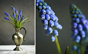 Blue Table Framed Prints - Hyacinth Still Life Framed Print by Nailia Schwarz