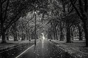 A Souppes - Hyde Park London Black...