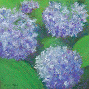 Close Up Floral Pastels Posters - Hydrangea Poster by Anne Katzeff