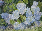 Gloria Turner - Hydrangea III SOLD