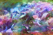 Photomanipulation Photo Prints - Hydrangea photoart II Print by Debbie Portwood