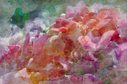 Photomanipulation Photo Prints - Hydrangea photoart III Print by Debbie Portwood