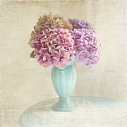 Purple Hydrangeas Framed Prints - Hyrdangeas Framed Print by Sylvia Cook