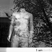 Window Reflection Posters - I am Amsterdam Poster by David Bowman