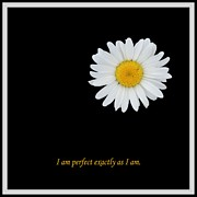 Affirmation Prints - I Am Perfect Exactly As I Am Print by Barbara Griffin