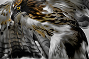 Red Tail Hawk Art - I am Redtail by Bill  Wakeley